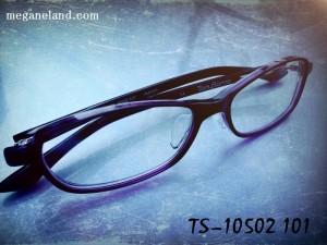 TS10502-101